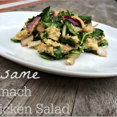 Dinner You Can Make During Dora a.k.a. Sesame Spinach Chicken Salad